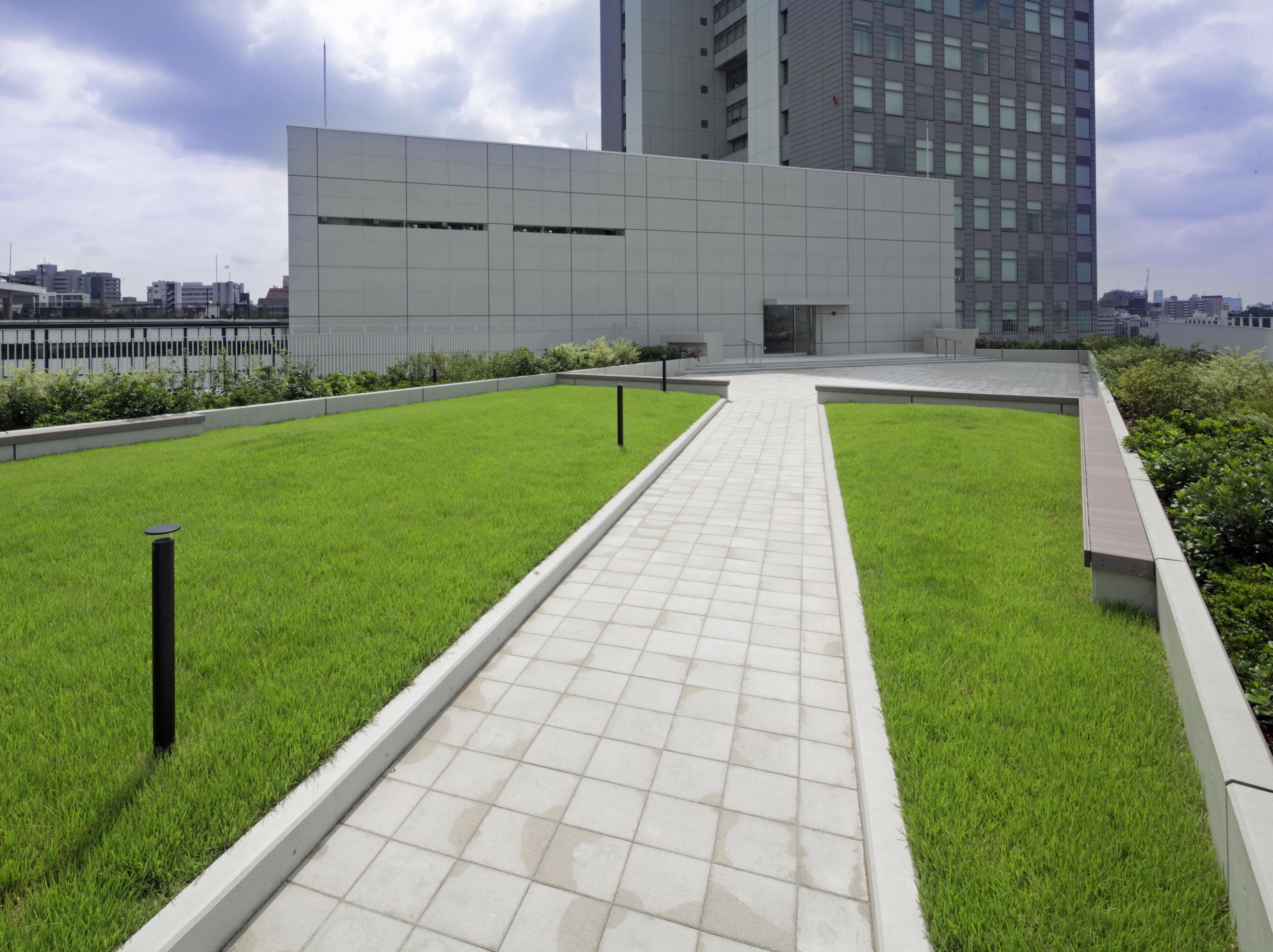 富士見屋上庭園