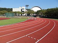 体育館とグラウンド